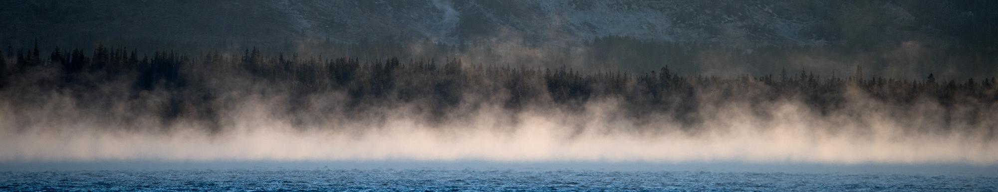banner_linder_mist